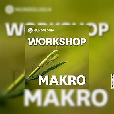MUNDOLOGIA-Workshop: Makrofotografie