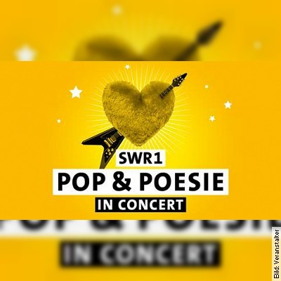 SWR1 Pop & Poesie live in Concert - In the air tonight - Tour 2020